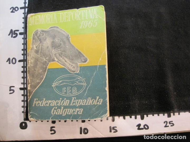 Coleccionismo deportivo: GALGOS-FEDERACION ESPAÑOLA GALGUERA-MEMORIA DEPORTIVA 1965-VER FOTOS-(K-2084) - Foto 66 - 248306145