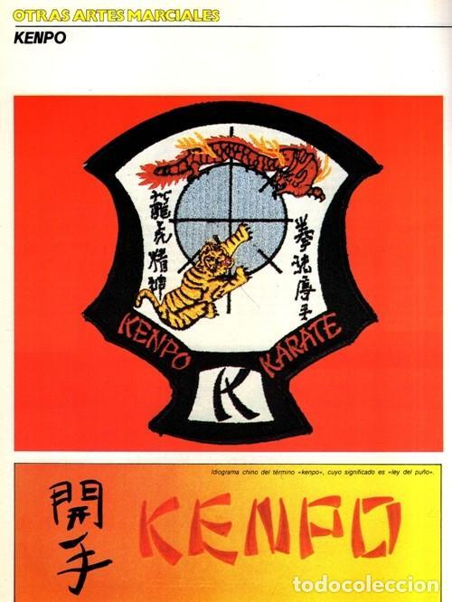 Coleccionismo deportivo: ARTES MARCIALES. COMPLETA 4 TOMOS. KARATE. JUDO. AIKIDO. FULL CONTACT. KUNG FU. KENDO. - Foto 11 - 266832849