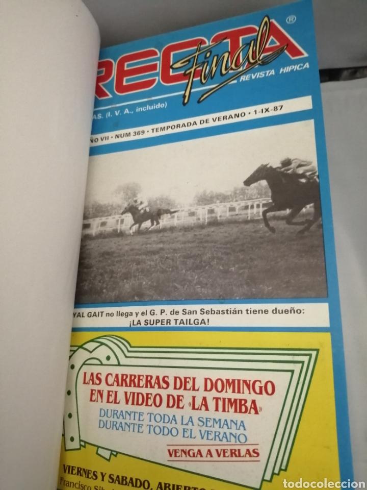 Coleccionismo deportivo: RECTA FINAL. REVISTA HÍPICA: TOMO CON 17 NÚMEROS: DE 369 (1/09/1987) A 385 (29/12/1987) - Foto 4 - 270679423