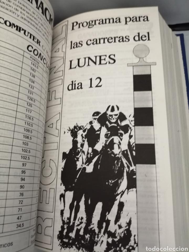Coleccionismo deportivo: RECTA FINAL. REVISTA HÍPICA: TOMO CON 17 NÚMEROS: DE 369 (1/09/1987) A 385 (29/12/1987) - Foto 7 - 270679423