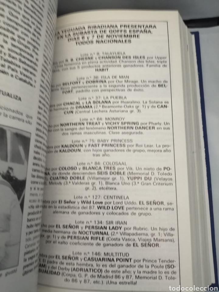 Coleccionismo deportivo: RECTA FINAL. REVISTA HÍPICA: TOMO CON 17 NÚMEROS: DE 369 (1/09/1987) A 385 (29/12/1987) - Foto 10 - 270679423