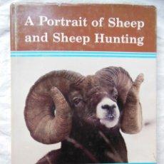 Coleccionismo deportivo: A PORTRAIT OF SHEEP AND SHEEP HUNTING (FOTOS DE OVEJAS Y CAZA DE OVEJAS) 1980 ROY A. SCHULTZ. 1ªED. Lote 287308808