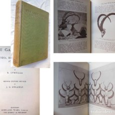Coleccionismo deportivo: THE GAME ANIMALS OF INDIA, BURMA, MALAYA AND TIBET. 1924 R, LYDEKKER. 2ND EDN REVISED. Lote 289847913