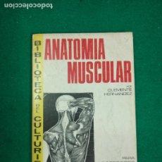 Coleccionismo deportivo: BIBLIOTECA DEL CULTURISTA. CLEMENTE HERNÁNDEZ. ANATOMÍA MUSCULAR. EDITORIAL ALAS 1970.. Lote 294995488