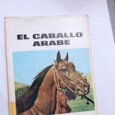Libros: EL CABALLO ÁRABE. TOCAGNI, HECTOR. ED. ALBATROS.. Lote 231898805