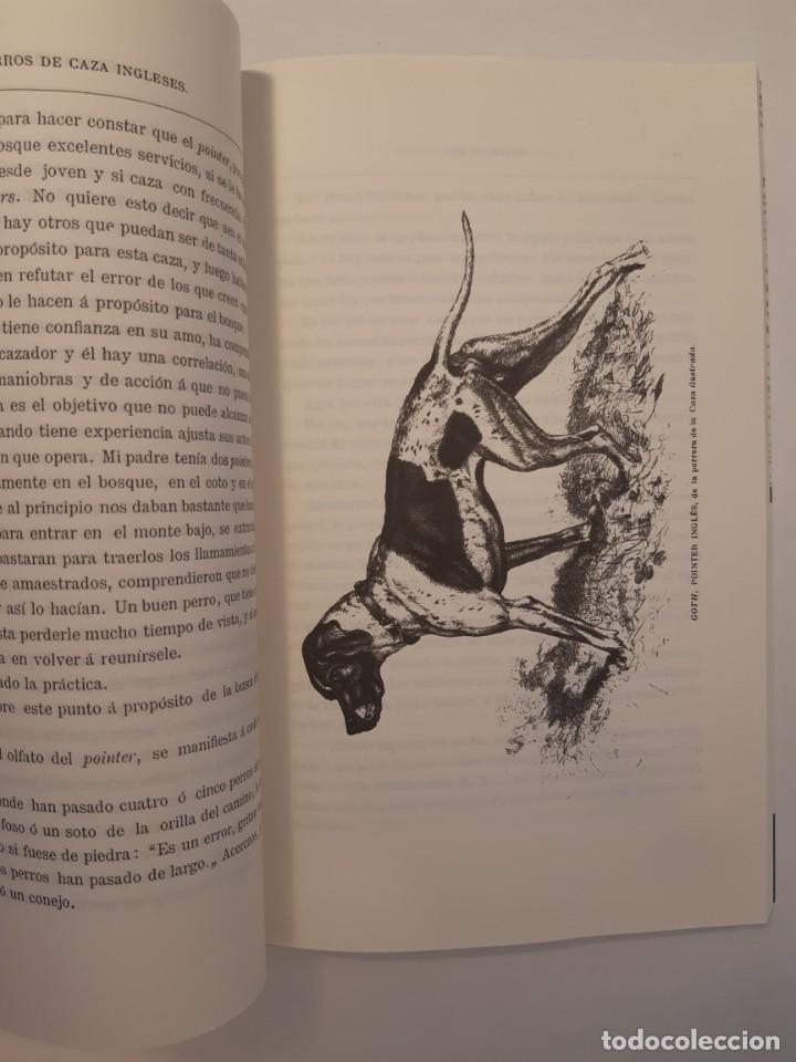 Libros: 3 libros facsímiles relativos a la CAZA. Perros de muestra Cacería Pesca Escopetas Cazadores - Foto 3 - 237390160