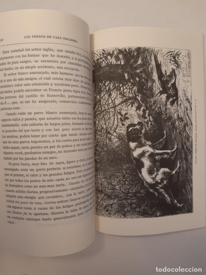 Libros: 3 libros facsímiles relativos a la CAZA. Perros de muestra Cacería Pesca Escopetas Cazadores - Foto 4 - 237390160
