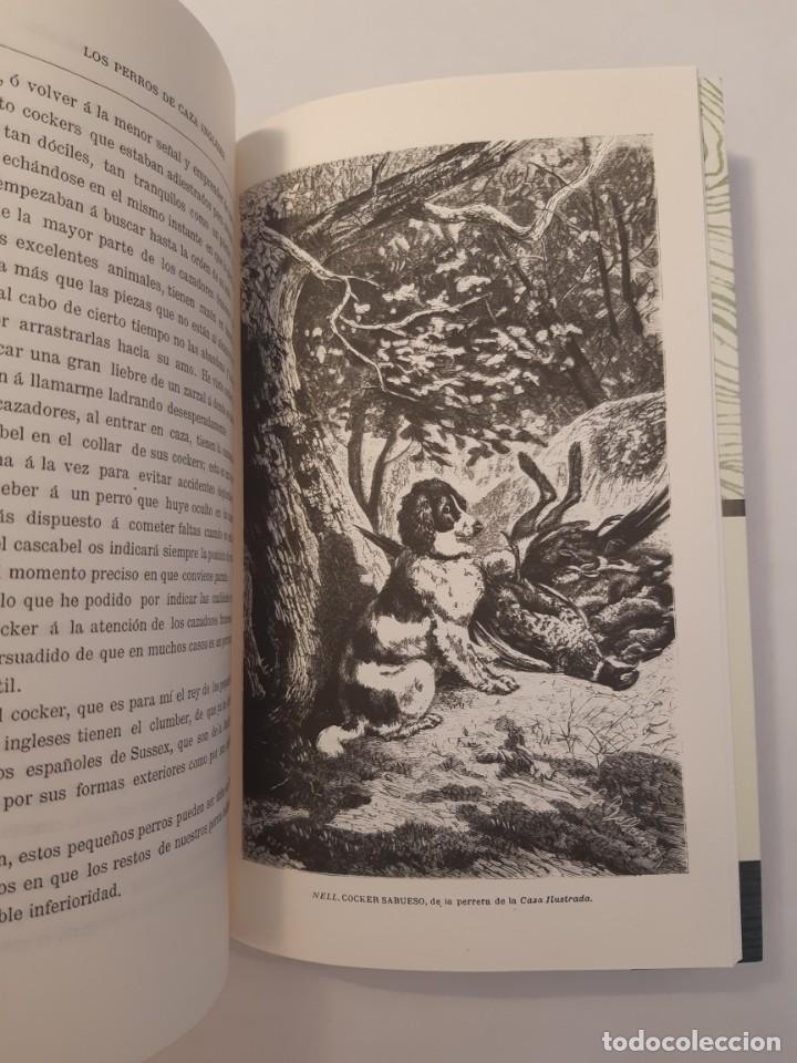 Libros: 3 libros facsímiles relativos a la CAZA. Perros de muestra Cacería Pesca Escopetas Cazadores - Foto 5 - 237390160