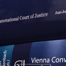 Libros: LITIGATION AT THE INTERNATIONAL COURT OF JUSTICE PRACTICE AND PROCEDURE. Lote 274658258