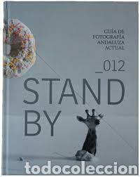 GUIA DE FOTOGRAFÍA ANDALUZA ACTUAL, STAND BY. JUNTA DE ANDALUCIA. TAPA DURA 250 PP (Libros Nuevos - Bellas Artes, ocio y coleccionismo - Diseño y Fotografía)