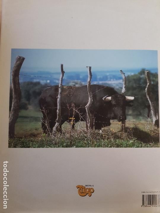 Libros: EN TIERRAS DEL TORO BRAVO - TEXTO DE ALVARO DOMECQ Y DIEZ - TRIGO ED. S.L. - AÑO 1995 (ILUST) - Foto 9 - 142149230