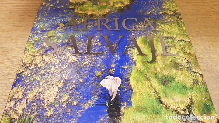 Libros: ÁFRICA SALVAJE / ALEX BERNASCONI / ED - TURNER - 2017 / LIBRO PRECINTADO / DE LUJO. - Foto 2 - 147766874