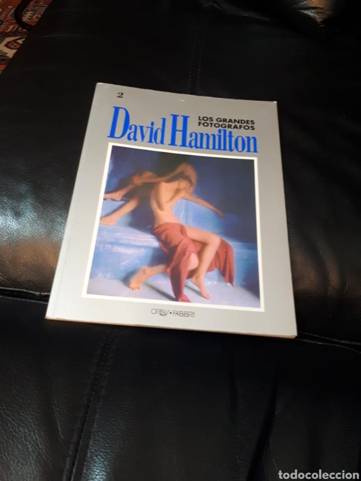 DAVID HAMILTON LOS GRANDES FOTOGRAFOS (Libros Nuevos - Bellas Artes, ocio y coleccionismo - Diseño y Fotografía)