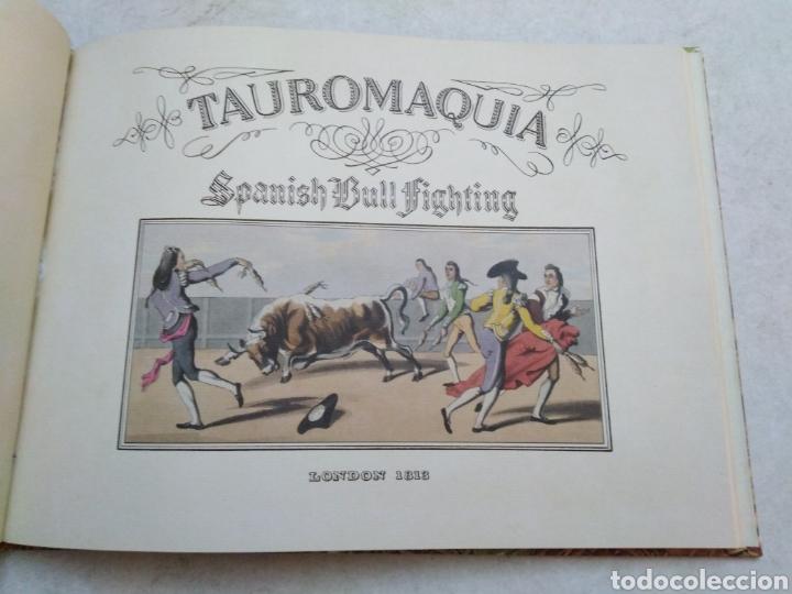 LIBRO TAUROMAQUIA ( ILUSTRADO ) (Libros Nuevos - Bellas Artes, ocio y coleccionismo - Diseño y Fotografía)