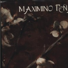 Libros: MAXIMINO PEÑA VIDA Y OBRA LOURDES CERRILLO RUBIO AYUNTAMIENTO SORIA 1993 GASTOS DE ENVIO GRATIS. Lote 140170774