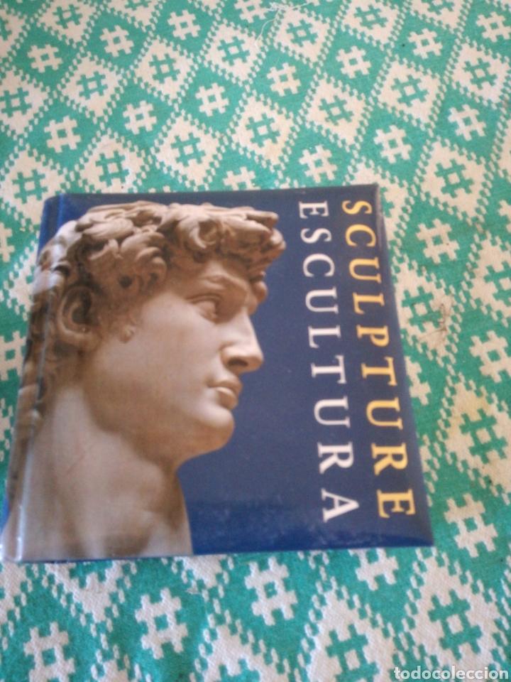LIBRO DE ESCULTURA (Libros Nuevos - Bellas Artes, ocio y coleccionismo - Escultura)