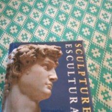 Libros: LIBRO DE ESCULTURA. Lote 148750532
