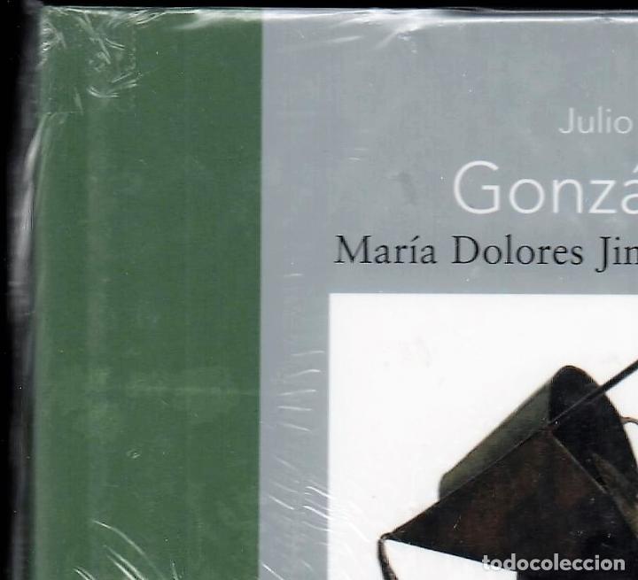 Libros: JULIO GONZÁLEZ Mª DOLORES JIMÉNEZ-BLANCO FUNDACIÓN MAPFRE INSTI CULTURA 2007 1ª EDICIÓN PLASTIFICADO - Foto 7 - 185962713