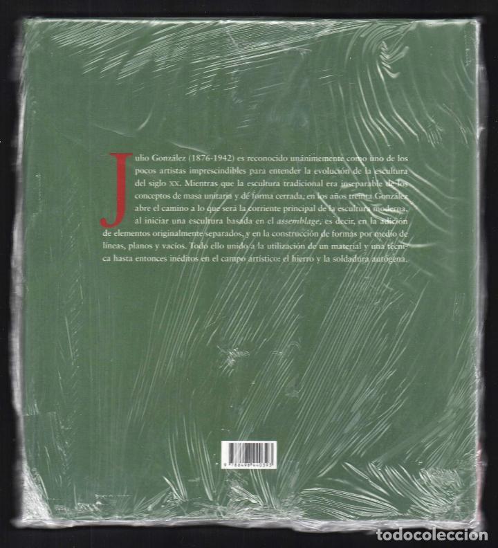 Libros: JULIO GONZÁLEZ Mª DOLORES JIMÉNEZ-BLANCO FUNDACIÓN MAPFRE INSTI CULTURA 2007 1ª EDICIÓN PLASTIFICADO - Foto 9 - 185962713