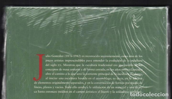 Libros: JULIO GONZÁLEZ Mª DOLORES JIMÉNEZ-BLANCO FUNDACIÓN MAPFRE INSTI CULTURA 2007 1ª EDICIÓN PLASTIFICADO - Foto 10 - 185962713