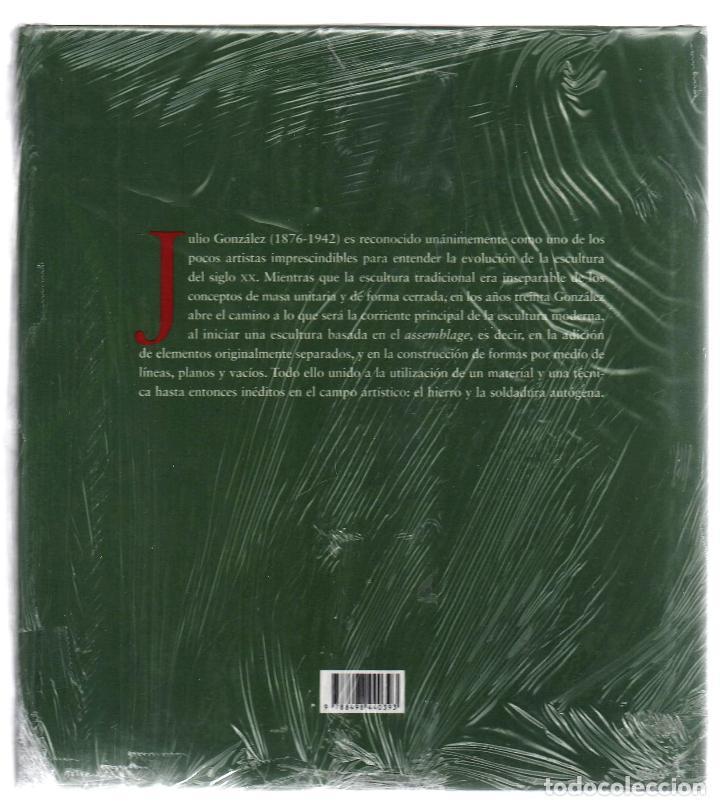 Libros: JULIO GONZÁLEZ Mª DOLORES JIMÉNEZ-BLANCO FUNDACIÓN MAPFRE INSTI CULTURA 2007 1ª EDICIÓN PLASTIFICADO - Foto 13 - 185962713