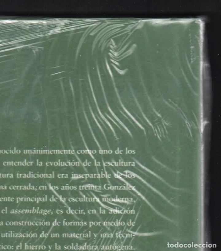Libros: JULIO GONZÁLEZ Mª DOLORES JIMÉNEZ-BLANCO FUNDACIÓN MAPFRE INSTI CULTURA 2007 1ª EDICIÓN PLASTIFICADO - Foto 16 - 185962713