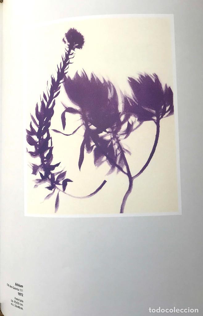 Libros: Signos - Símbolos - Siluetas - Sombras. Nouveau Realisme Nouvelle Figuration - Foto 4 - 204807353