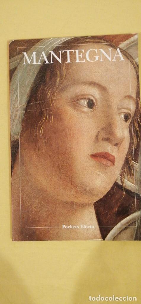 MANTEGNA ITALIANO ASOMBROSAS ILUSTRACIONES POCKETS ELECTA MILANO (Libros Nuevos - Bellas Artes, ocio y coleccionismo - Escultura)