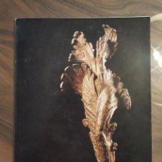 Libros: LIBRO ESCULTOR APEL.LES FENOSA. MUSÉE RODIN, AÑO 1980. EN FRANCES.. Lote 235651970