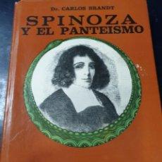 Libros: SPINOZA Y EL PANTEISMO DR CARLOS BRANT. Lote 256031380