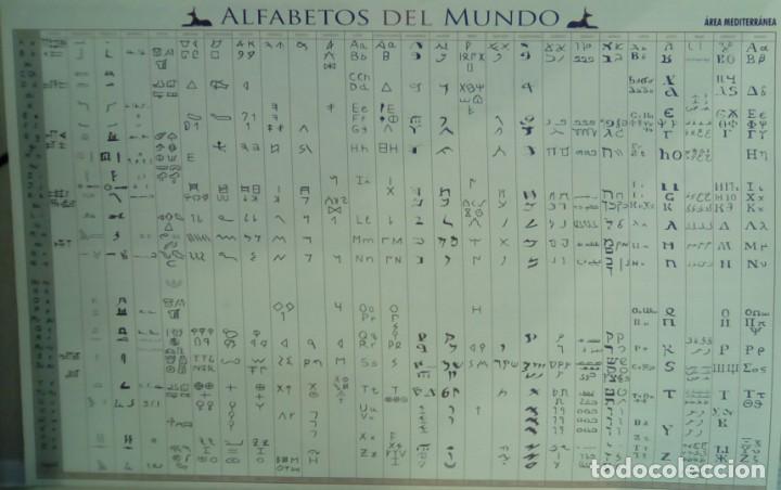 Libros: PÓSTER ALFABETOS DEL MUNDO, ÁREA MEDITARRÁNEA - Foto 3 - 144393950