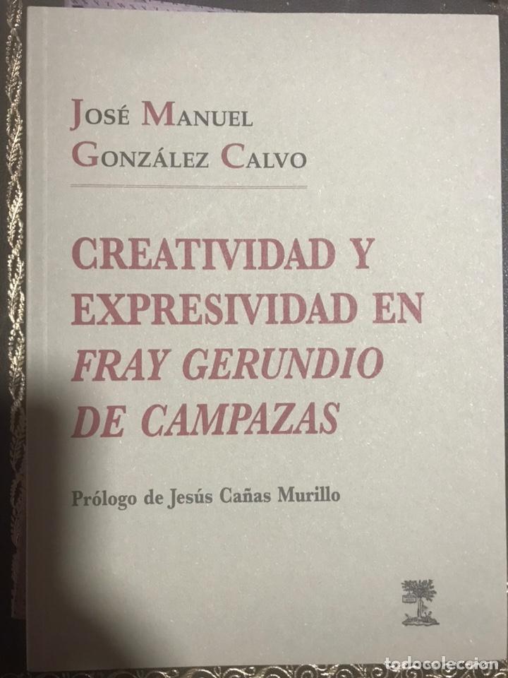 CREATIVIDAD Y EXPRESIVIDAD EN FRAY GERUNDIO DE CAMPAZAS. J. M. GONZÁLEZ CALVO (Libros Nuevos - Humanidades - Filología)