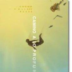 Libros: FILOSOFÍA. ESPIRITUAL. PENSAMIENTO. CAMINO A LO PROFUNDO - ENRIQUE COLLADO RUEDA. Lote 43739090