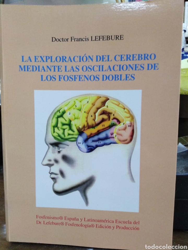 LA EXPLORACIÓN DEL CEREBRO MEDIANTE LOS OSCILACIONES DE LOS FOSFENOS DOBLES-FRANCIS LEFEBURE-2002 (Libros Nuevos - Humanidades - Filosofía)