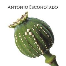 Libros: HISTORIA GENERAL DE LAS DROGAS- TOMO 1- ANTONIO ESCOHOTADO.. Lote 270986043