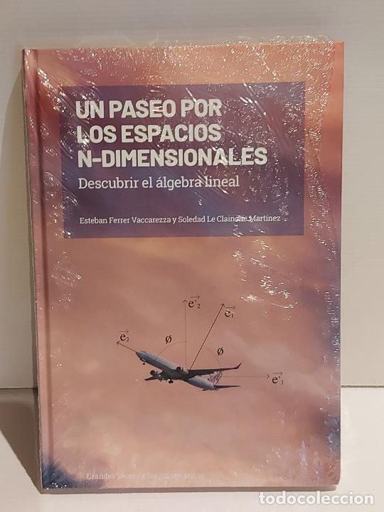 GRANDES IDEAS DE LAS MATEMÁTICAS / 7 / UN PASEO POR LOS ESPACIOS... / PRECINTADO A ESTRENAR. (Libros Nuevos - Ciencias, Manuales y Oficios - Física, Química y Matemáticas)