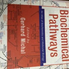 Libros: BIOCHEMICAL PATHWAYS - GERHARD MICHAL. Lote 233430440