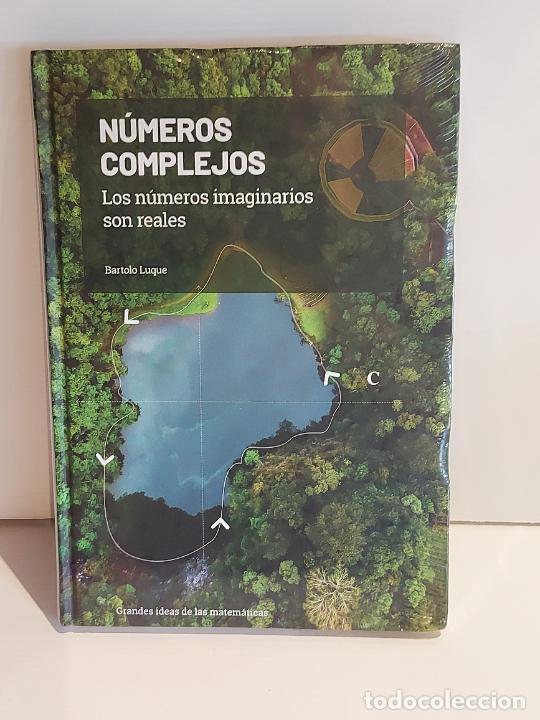 GRANDES IDEAS DE LAS MATEMÁTICAS / 11 / NÚMEROS COMPLEJOS / PRECINTADO A ESTRENAR. (Libros Nuevos - Ciencias, Manuales y Oficios - Física, Química y Matemáticas)