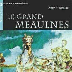 Libros: LE GRAND MEAULNES. MATERIAL AUXILIAR. EDUCACION SECUNDARIA (CHAT NOIR. LIRE ET S'ENTRAINER).. Lote 82113755