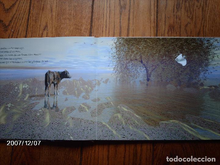 Libros: tomatito et saladelle - historia de un gitano y un toro - en frances - Foto 4 - 96899747