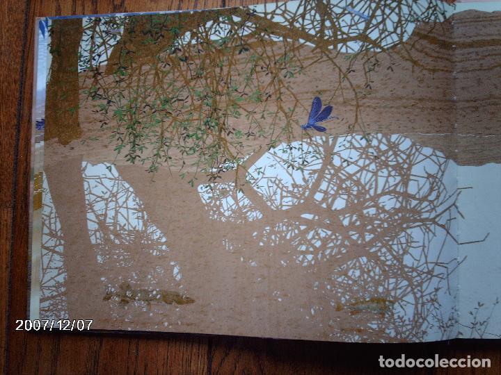 Libros: tomatito et saladelle - historia de un gitano y un toro - en frances - Foto 15 - 96899747
