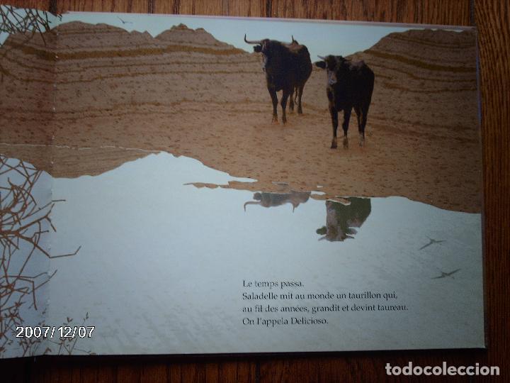 Libros: tomatito et saladelle - historia de un gitano y un toro - en frances - Foto 16 - 96899747