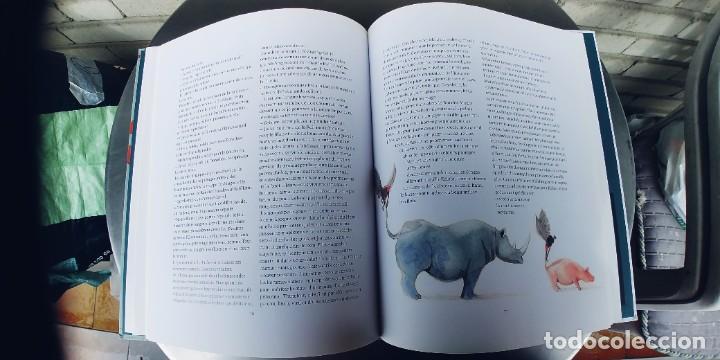 Libros: LIBRO LE MAGICIEN D,OZ ,FRANCES,EDITIONS NORD-SUD,TAPA DURA,103 PAGINAS,NUEVO, - Foto 5 - 240712725