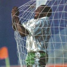 Coleccionismo deportivo: C. ONWUMECHILI & F.M. RICCI. - THE MAKING OF NIGERIA'S SUPER EAGLES. #. Lote 120764747
