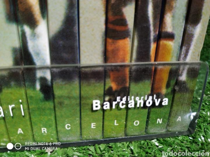 Coleccionismo deportivo: La colección del Centenario BARCA Es Barcanova - Foto 4 - 210188335