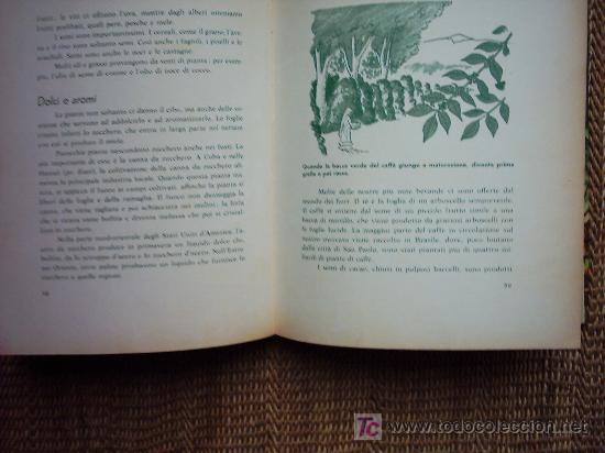 Libros: IL MAGICO MONDO VERDE. FERDINAND C. LANE. 27 ILLUSTRAZIONI DI RUSSELL FRANCIS PETERSON. 1959 1ª ED. - Foto 2 - 26025484