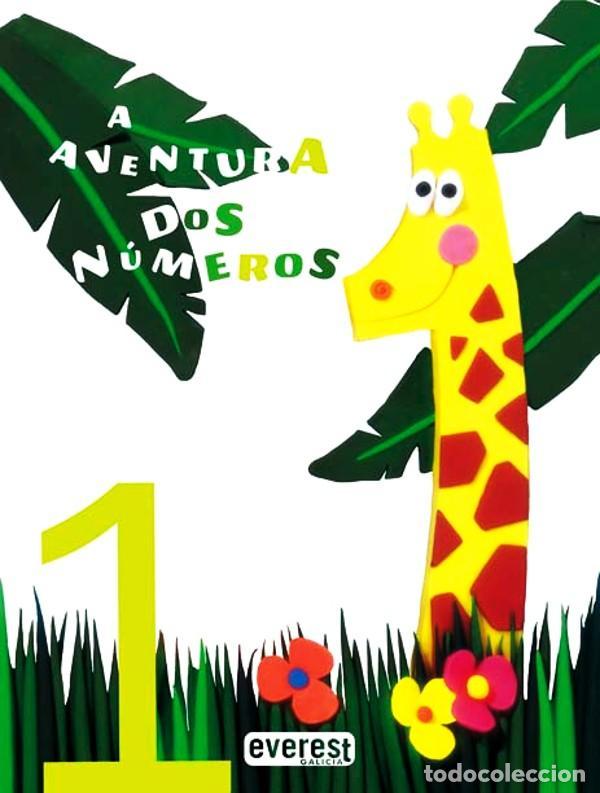 A AVENTURA DOS NÚMEROS 6VOLÚMENES/32 PÁGINAS GRAN FORMATO PASTA FLEXIBLE (Libros Nuevos - Otras lenguas locales - Gallego)