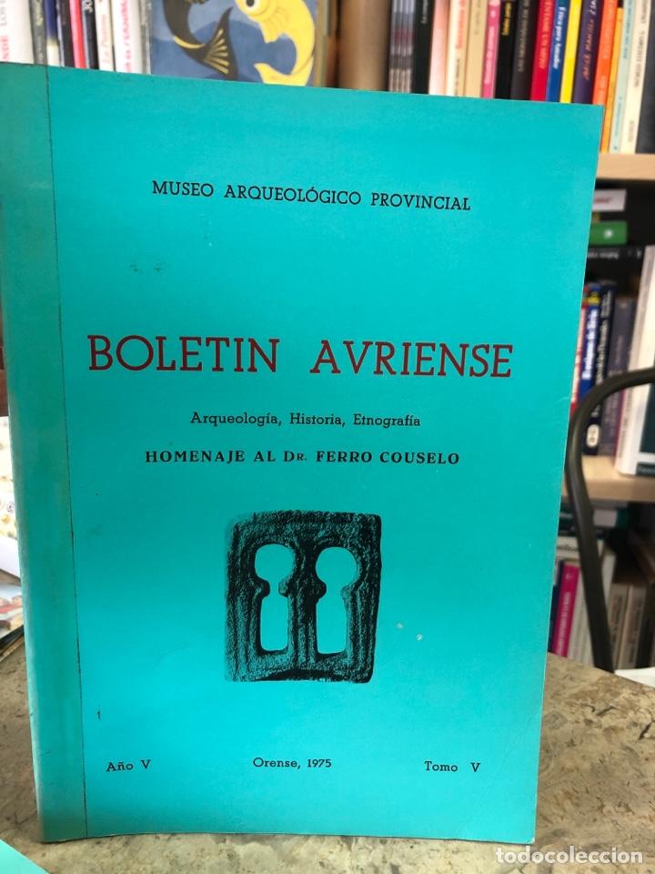 BOLETÍN AVRIENSE. AÑO V. TOMO V (Libros Nuevos - Otras lenguas locales - Gallego)