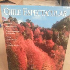 Libros: CHILE ESPECTACULAR ( ED. LUNWERL. Lote 101860022