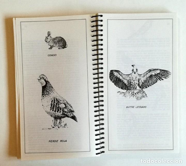 Libros: GUIA DEL ALTO MANZANARES - 1982 - Foto 5 - 150657670